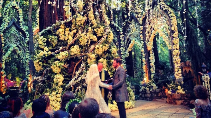 Sean Parker LotR Wedding