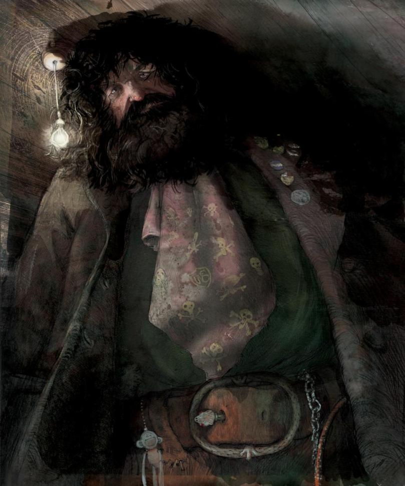 Hagrid Illustrated